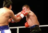 бокс, турнир