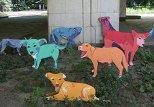 Инсталляция российской художницы Натальи Пастуховов под названием «Хорошая собака»