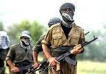 Курдская армия