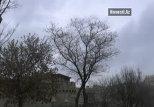 В Азербайджане происходит смещение сезонов – эколог