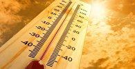 Погода жара