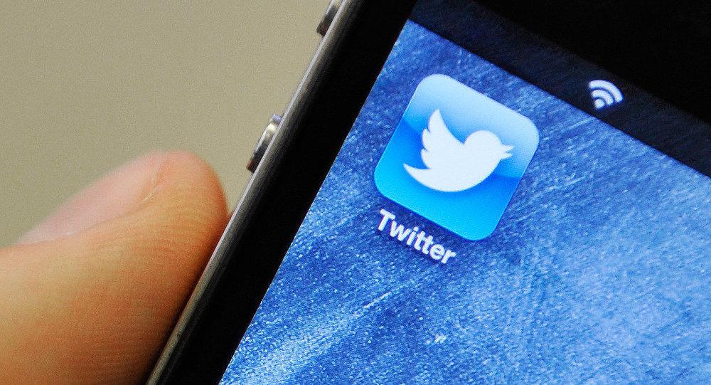 Число пользователей социальная сеть Twitter снизилось впервый раз с2013 года