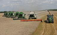 Уборка пшеницы на полях сельхозпредприятия.
