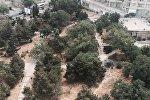 Парк у Дома-музея Джафара Джаббарлы стал местом для бездомных собак и сбора бомжей, так как территория парка полностью разрушена.