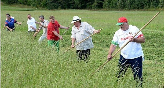 Aleksandr Lukaşenko və Jerar Depardye ot çalarkən