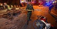 Taylandda terror