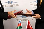 проект TANAP и «Южный коридор»