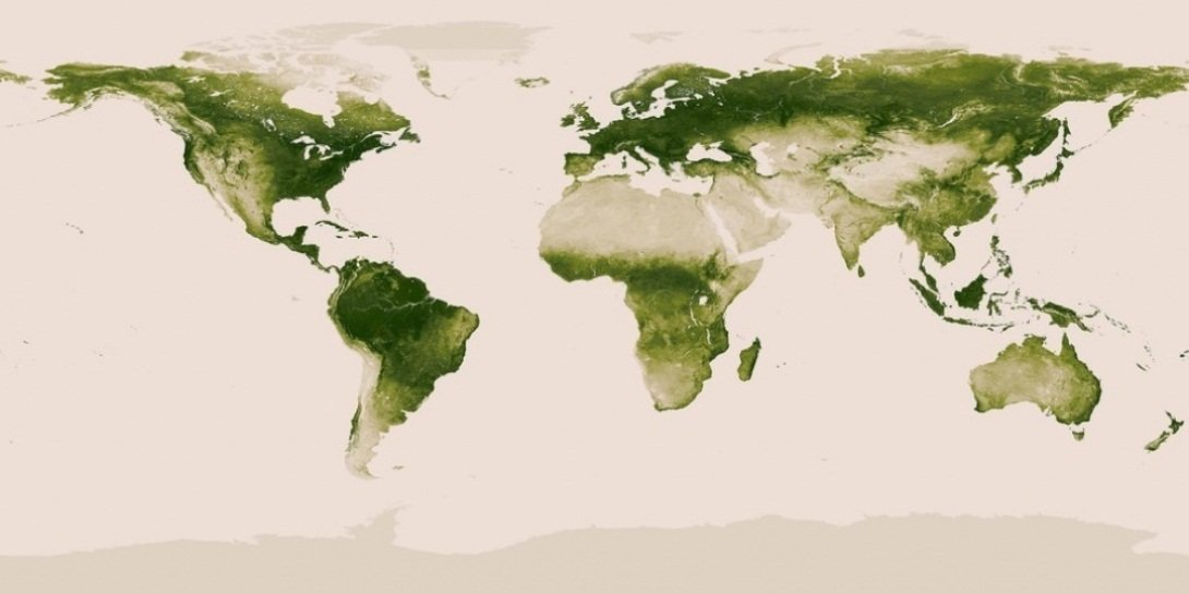 Dünyanın bitki xəritəsi
