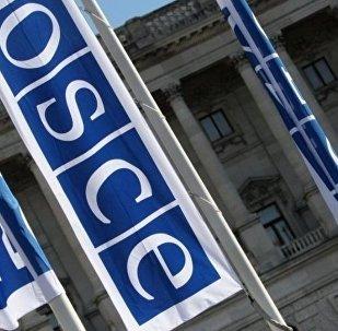 Флаги с логотипом ОБСЕ в Вене, фото из архива