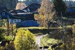 Осень в Омской области