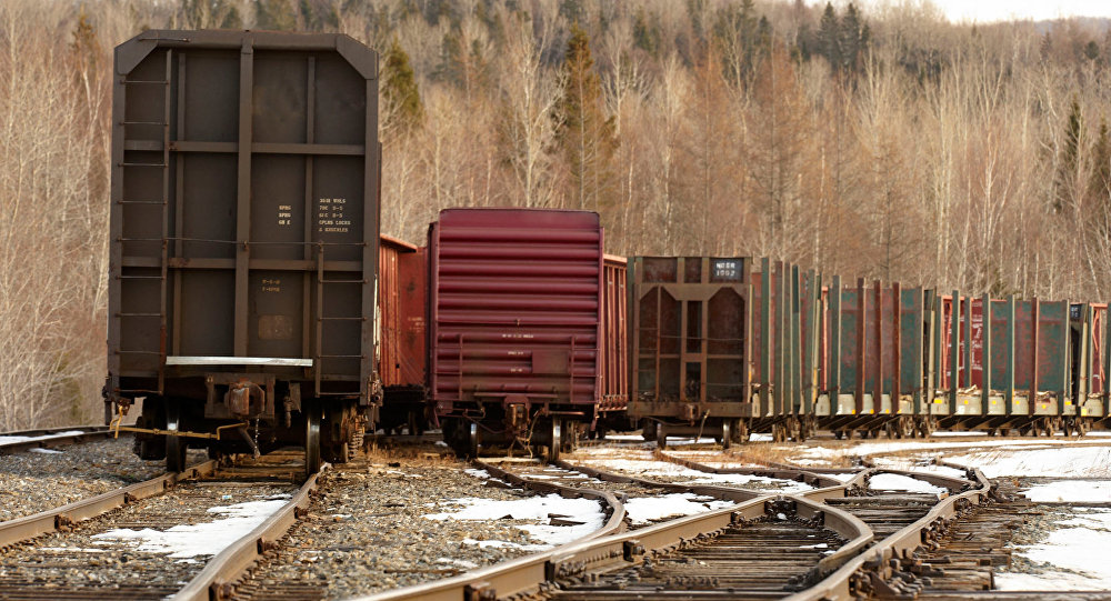 Грузовые вагоны. Фото АР