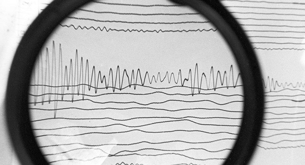 Сейсмограмма землетрясения. Архивное фото