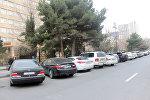 Bakı Dövlət Universitetinin qarşısındakı lyuks avtomobillər