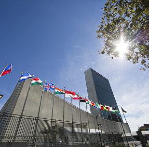Флаги стран мира перед штаб-квартирой ООН