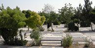 Кладбище Бехешт-е Захра в Тегеране. Архивное фото