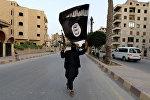 İŞİD terror təşkilatı