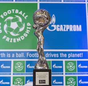 Кубок Международной детской социальной программы Футбол для дружбы