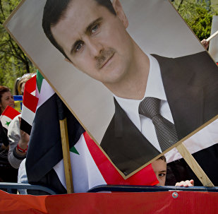 Митинг сторонников Басара Асада в Бухаресте, Румыния