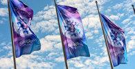 Eurovision 2016 mahnı müsabiqəsinin bayraqları