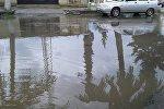 Qazaxda dəyişdirilməyən kanalizasiya sistemi problem yaradır