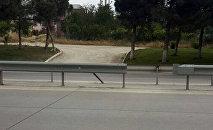 Эту дорогу местные жители прозвали дорогой смерти