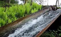 Лоток водяной мельницы