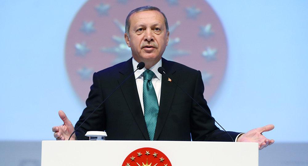Эрдоган выступил перед любителями вСтамбуле