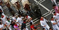 Забег быков по улицам испанской Памплоны