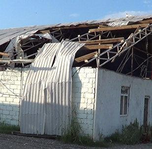 Мины и непогода наносят урон хозяйствам прифронтовых сел Азербайджана