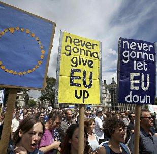 Протестанты на Площади парламента в Лондоне. 2 июля 2016 года