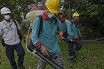 Malayziyada Zika virusuna ilk yoluxma halı baş verib