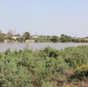 Берег реки Кура, фото из архива