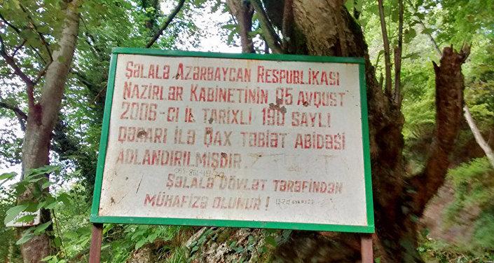 Qaxın İlisu kəndində turistlər üçün heç bir infrastruktur yoxdur