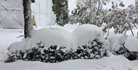 Обильный снегопад в городском округе Чалдоран иранской провинции Западный Азербайджан