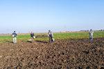 Сельские жители выполняют сезонные полевые работы, фото из архива