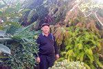 Tovuz rayonu Alakol kənd sakini Şahin Kazımovun həyətyanı sahəsində saldığı bağ