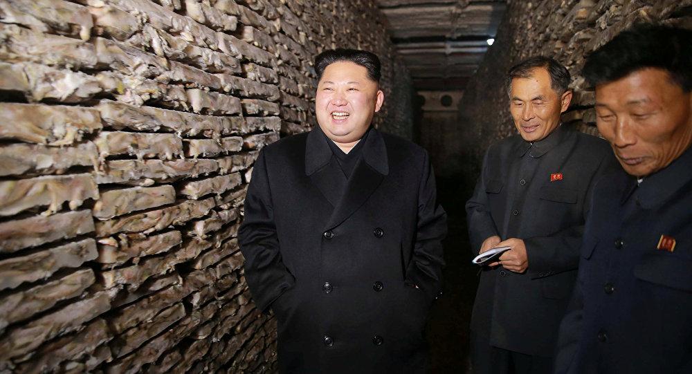 США и КНР договорились оновых санкциях вотношении Северной Кореи