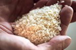 Готовая продукция завода по переработке зерна, собранного на рисовых полях, фото из архива