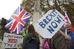 Демонстранты у здания парламента в Лондоне, 23 ноября 2016 года
