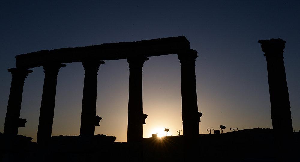 Palmira, arxiv şəkli