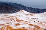 Şimali Afrikada yerləşən və dünyanın ən geniş səhrası olan Böyük Səhra