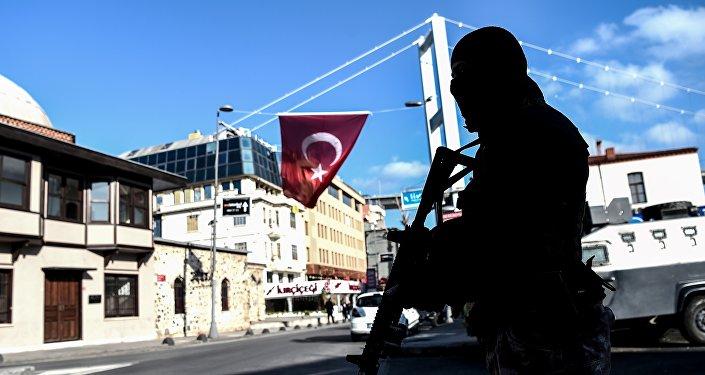 Стамбульский террорист получил приказ онападении отбоевиков ИГИЛ изРакки