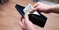 Деньги в кошельке, архивное фото