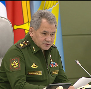 Шойгу заявил о выполнении задач РФ в Сирии и нулевом вкладе в борьбу с ИГ
