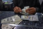 Мужчина пересчитывает 100-долларовые купюры США