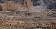 Пальмира, фото из архива