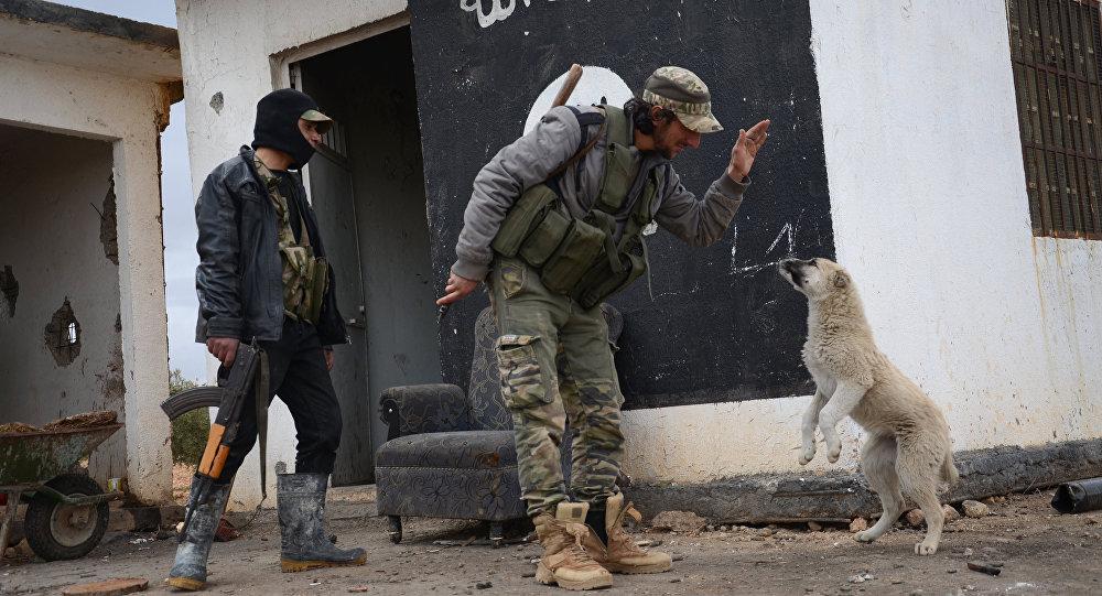Генштаб турецкой армии объявил овзятии Эль-Баба вСирии