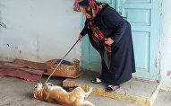 После смерти дочери одиночество пожилой женщины скрашивают домашние питомцы