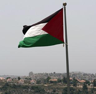 Национальный флаг Палестины, фото из архива