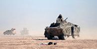 Солдат Сирийских демократических сил сидит на бронетранспортере в северной части города Ракка, Сирия, фото из архива